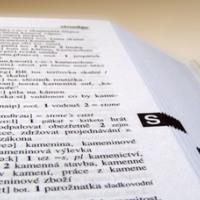 Los idiomas, la clave de la formación