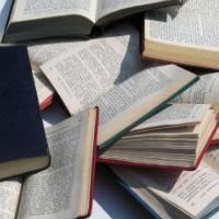 Un empleo entre libros